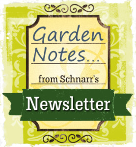 Garden Notes from Scharr's Newsletter
