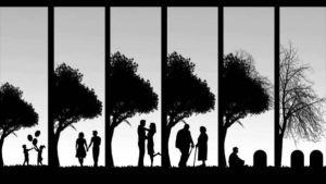 Relationships_722_MEDIUM