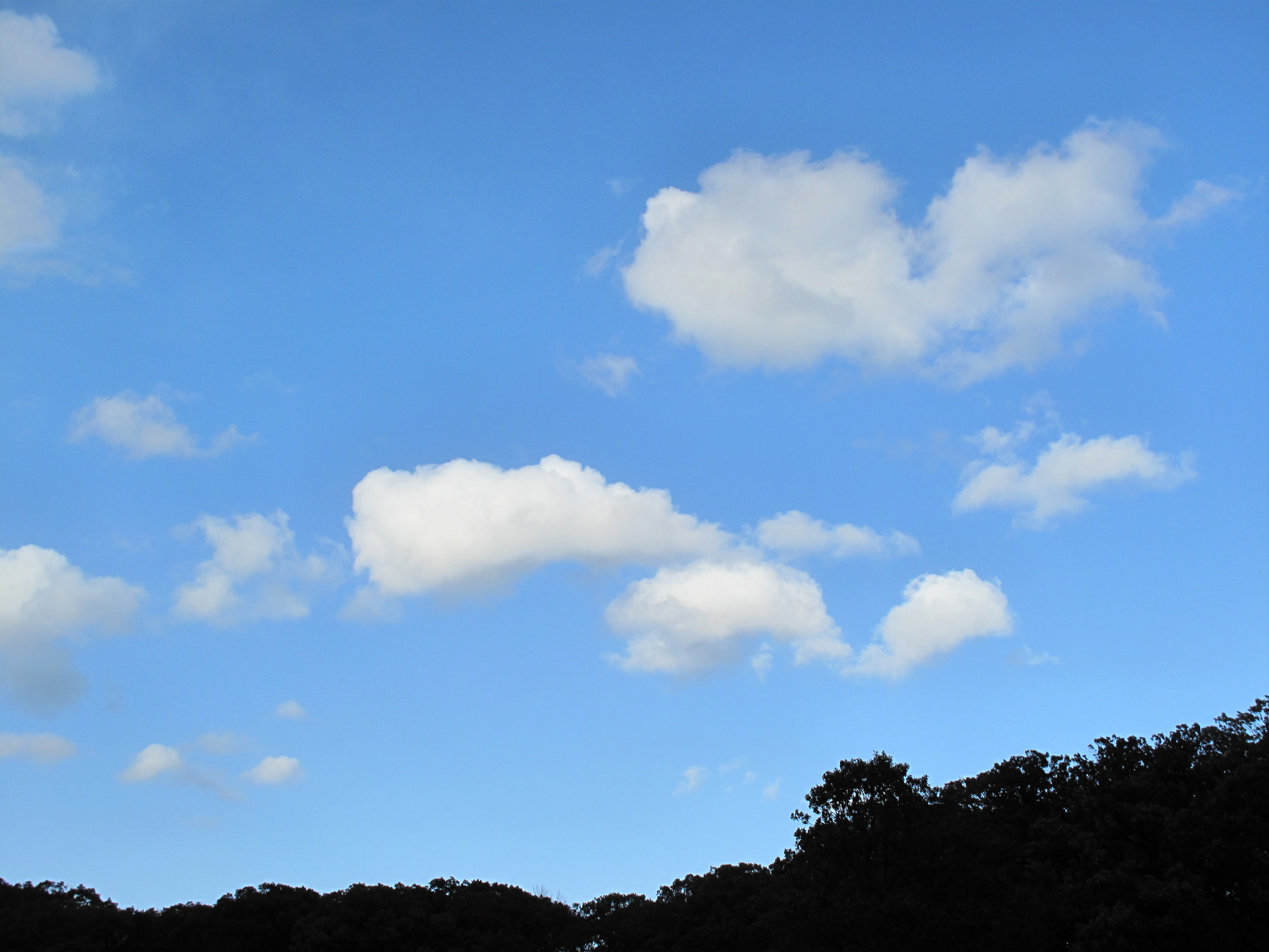Free Photography Stock Clouds Free Stock Photo Image Picture Sunny Sky Cloudscape