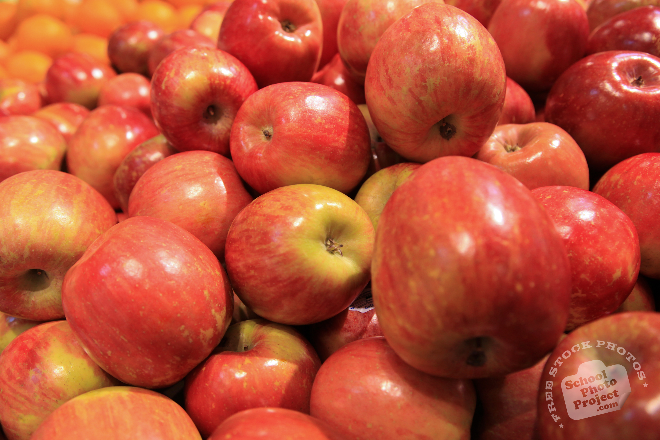 Free Photography Stock Apple Free Stock Photo Image Picture Fuji Apples Royalty Free