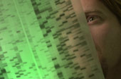 A researcher looking at a gene sequence