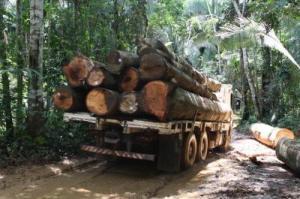 truck logging the Amazon