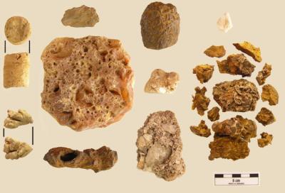 shaman stones