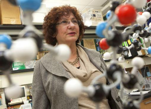 Polymers key to oral protein-based drugs