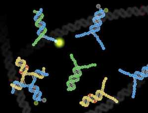 Breakthrough-in-detecting-DNA-mutations-could-help-treat-tuberculosis,-cancer