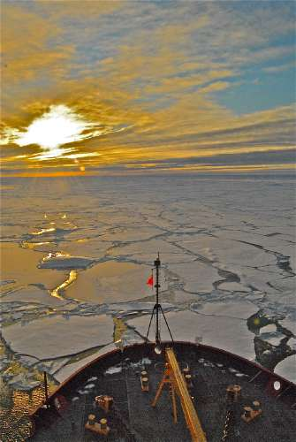 Unprecedented Rate and Scale of Ocean Acidification Found in the Arctic