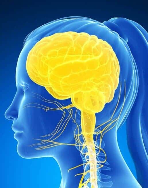 Study: 'Brain training' may boost working memory, but not intelligence