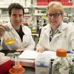 Rare gene variants double risk for Alzheimer's disease