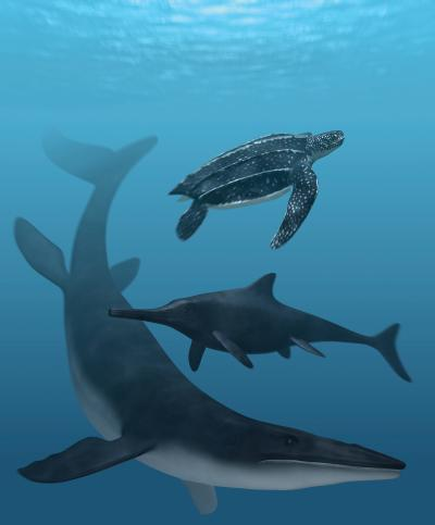 Fossil pigments reveal the colors of ancient sea monsters