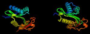 799px-Protein_PCAF_PDB_1cm0