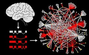 protein_interaction_network