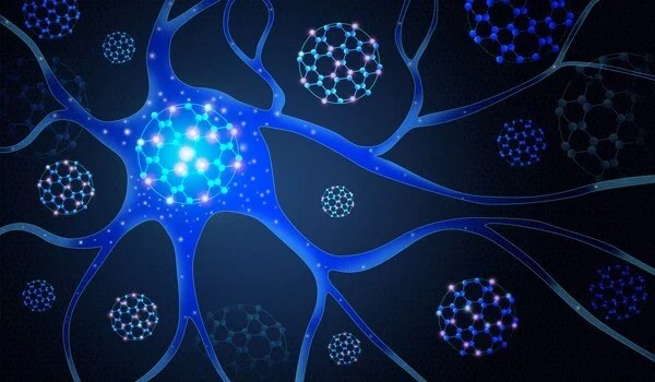 Stanford scientists reveal complexity in the brain's wiring diagram