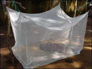 Bed nets and vaccines: Some combinations may worsen malaria