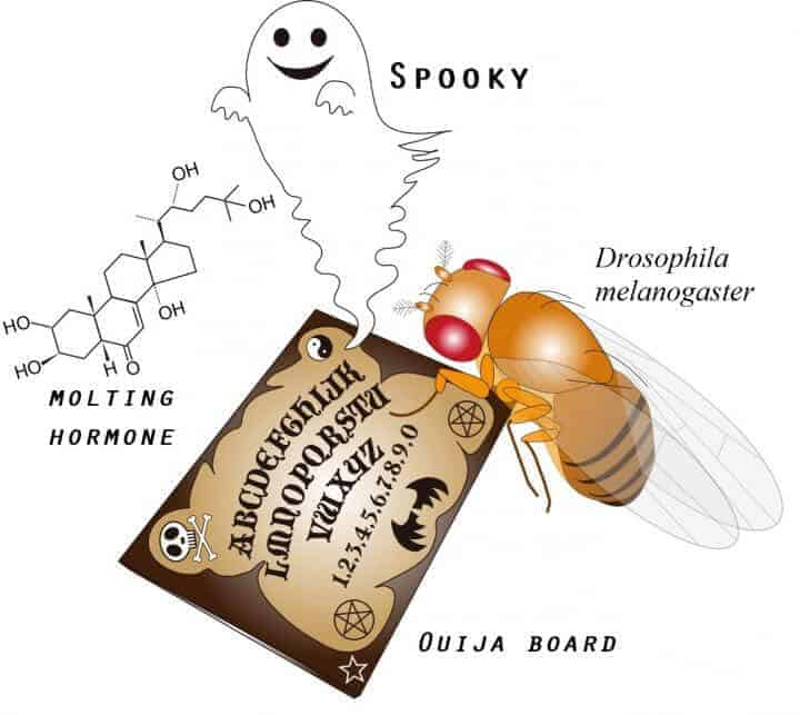 Expression of a 'Ouija Board' protein that can summon 'monster' genes