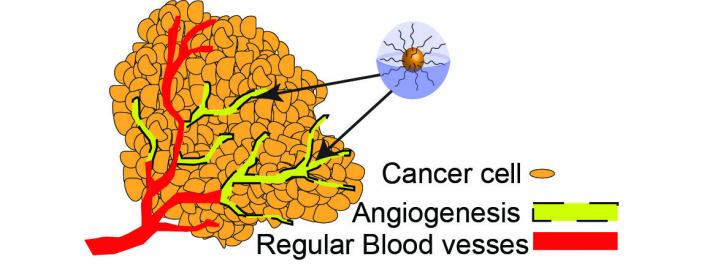 Important advance made with new approach to 'control' cancer, not eliminate it