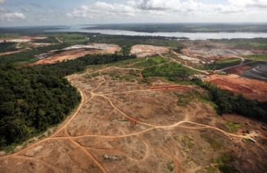 Deforestation Amazon Rainforest