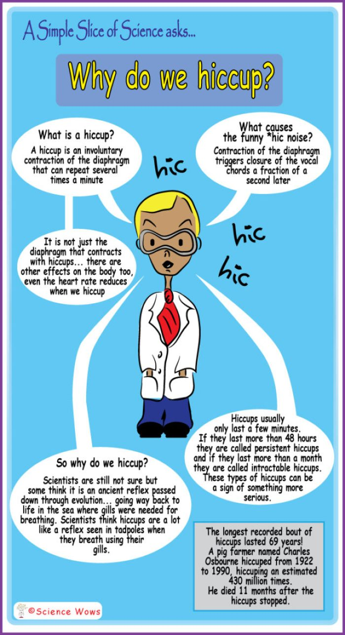 Why do we hiccup?