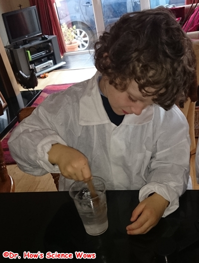 Dissolve the borax in the water