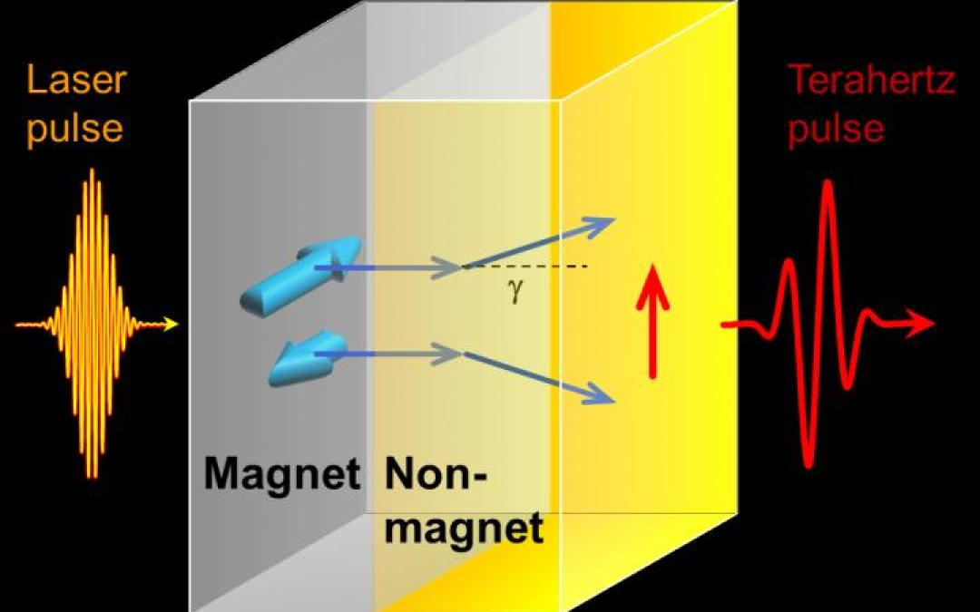 Terahertz radiation: A useful source for food safety