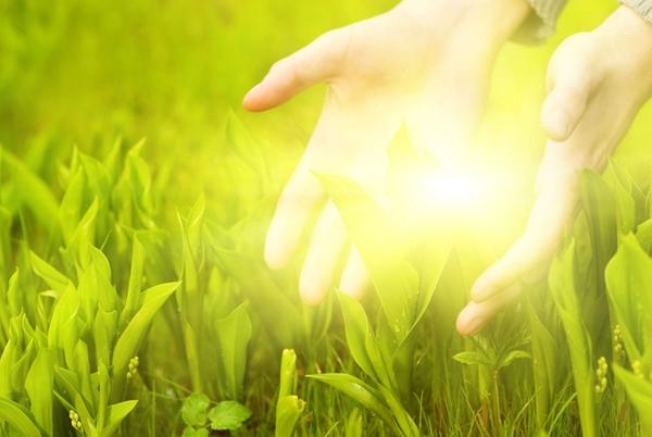 Human hands touching green grass. Beautiful shining betweet them