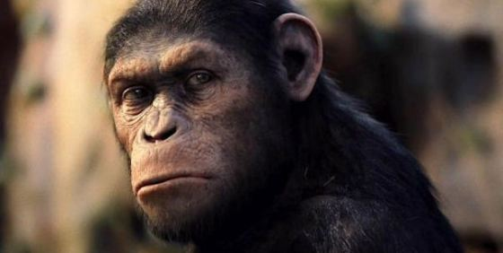 Rise-of-the-Planet-of-the-Apes-Caesar-Img-wide