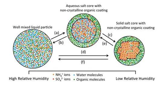 Visual Evidence that Atmospheric Particles Can Undergo Liquid\u2013Liquid - liquid particles