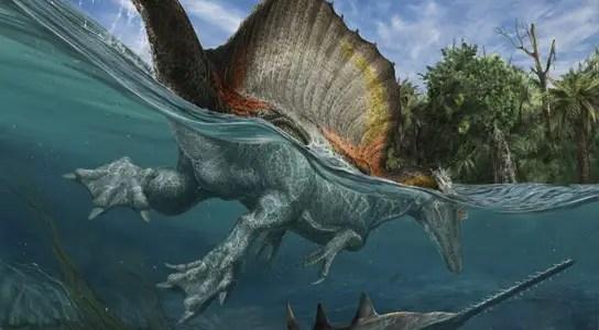 Ibrahim 3d Name Wallpaper The First Truly Semiaquatic Dinosaur Spinosaurus Aegyptiacus