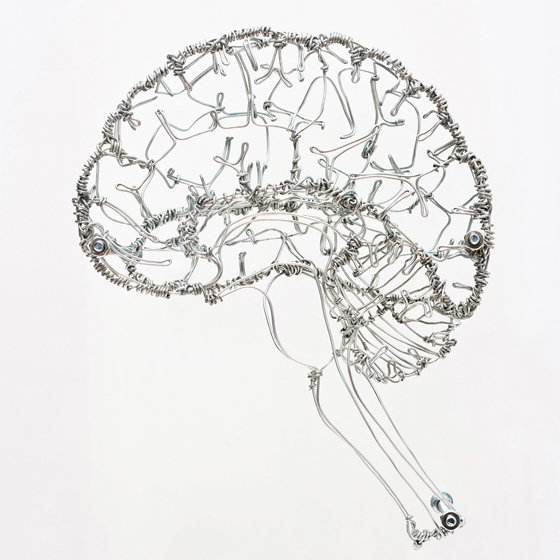 3d brain project ideas brain wires