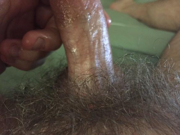 My Hairy Dick