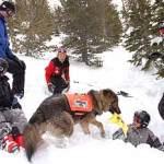 Boy Scout Image -- Avalanche Sim