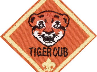Advancement FAQs Tiger Cubs
