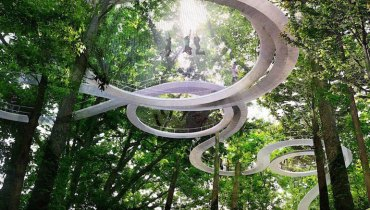 VANCOUVER WOULD BE COOLER IF #286 | It Had A Playground High Up In A Forest Canopy