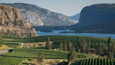 GOODS | Blue Mountain Vineyard Opens Its Okanagan Falls Tasting Room For The Season