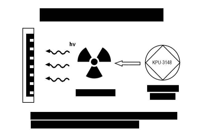 rose diagram1