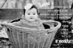 Tutorial | Document Milestones by Adding Text to Photos Using Picasa