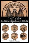 Eye of Lizard, Tail of Mouse | Free Halloween Apothecary Labels