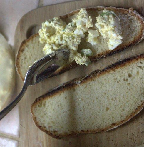 egg salad 11