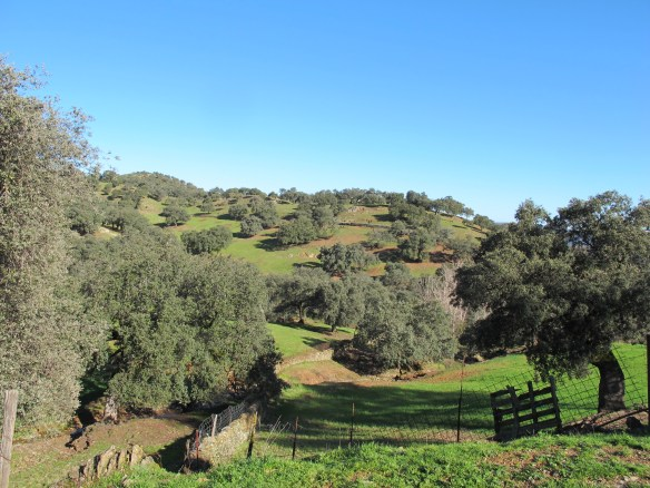 Finca los Robledos is in the beautiful Sierra de Aracena.