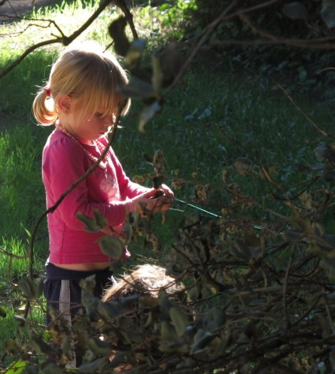 Warm autumn days are perfect for family walks - no need for jumpers or sunhats.