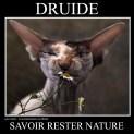 Druide : savoir rester nature