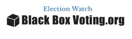 black-box-voting