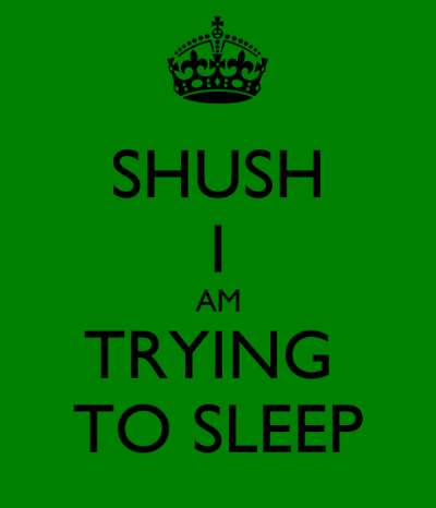 SHUSH I AM TRYING TO SLEEP Poster | Jacey | Keep Calm-o-Matic