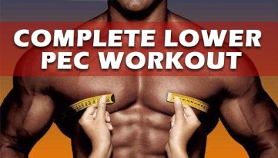 Best Lower Chest Workout For Definition | Yourviewsite.co