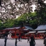 神降臨の地、熊野速玉大社と神倉神社(世界遺産)【熊野古道】