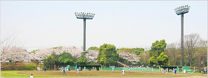 오오이후토츄오카이힌공원 스포츠의 숲