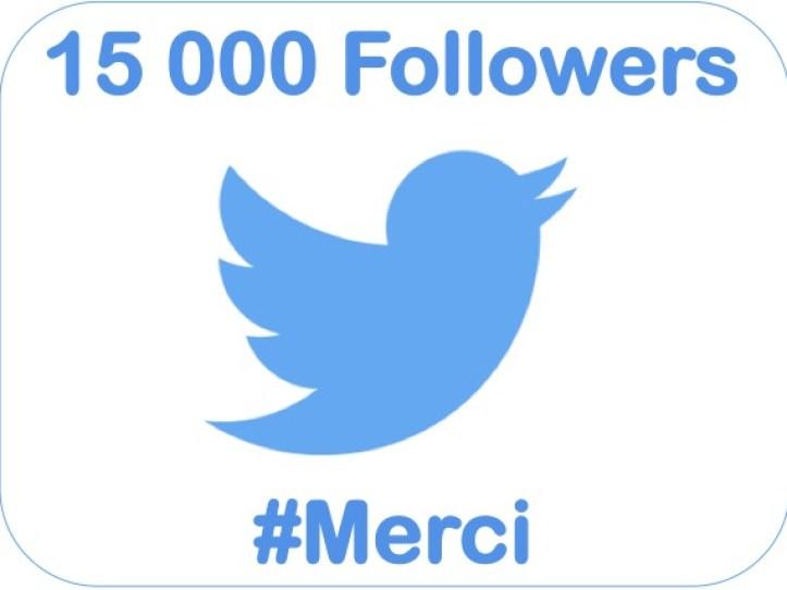 15000-followers-twitter-sebastien-bourguignon