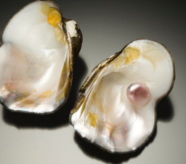 New Chapters: Natural Pearls & Conch Pearls, Return of the Native