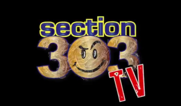 303tv logo (new)