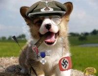 Police Scotland, Holocaust-Denial and Nazi Dogs  secular ...