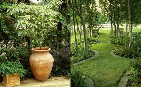 Planning a garden for a non-gardener - Telegraph